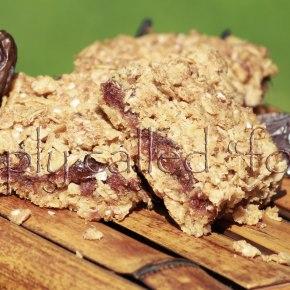 Gluten free datessquares